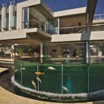 Aquarium extérieur - Glass House par Nico Van Der Meulen Architects à Johannesburg Afrique du Sud