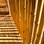 déco bambou - benjamin garcia saxe - maison sur pilotis - costarica