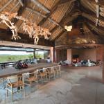 Séjour - Réserve Leobo - Rech et Cartens Architects - Afrique du Sud