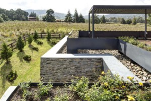 terrasse-toiture-et-jardin-casa-vr-elias-rizo-architecte-tapalta-mexique1