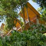 vue de dessous - benjamin garcia saxe - maison sur pilotis - costarica