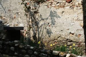 renovation-ecologique-300x200.tmp_