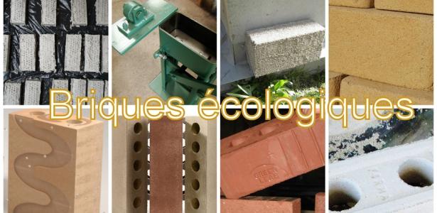 Des briques cologiques pour une construction durable for Construction en brique de bois