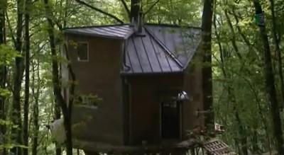 maison dans les arbres illégales dans le doub