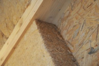 fibre de bois