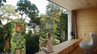 treehouse-urbaine