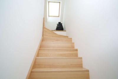escalier bois - Le-Bourg-Neuf par ng-architecte - Bretagne, France