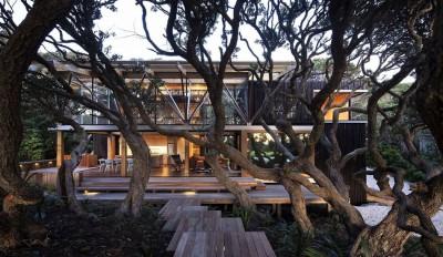une-Under-Pohutukawa-par-Herbst-Architects