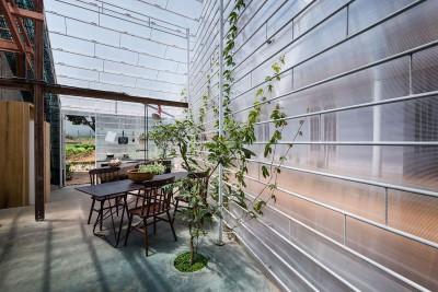 séjour & plante intérieure - FA-house par Atelier Tho-A - Da Lat, Vietnam