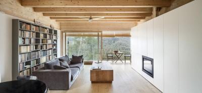 salon-bibliothèque & cheminée design - House LLP par Alventosa Morell Arquitectes - Collserola, Espagne