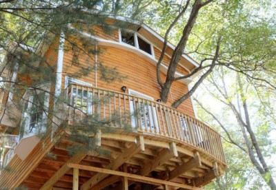 treehouse  Massachusetts, Jay Hewit