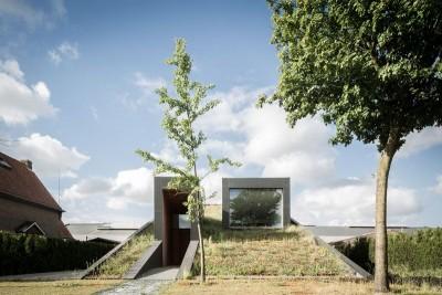 Toiture végétalisée & baie vitrée - wedge-shaped-house par Architectes Oyo, Belgique