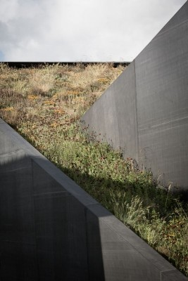 Toiture végétalisée - wedge-shaped-house par Architectes Oyo, Belgique