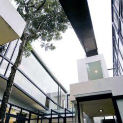 Cour intérieur & arbre - chokchai-4-house par Archimontage Design - Bangkok, Thailande