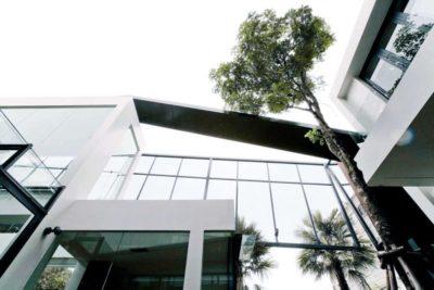 Façade principale vitrée & arbre - chokchai-4-house par Archimontage Design - Bangkok, Thailande