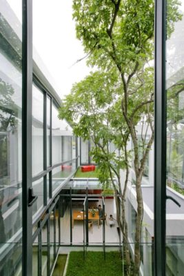Façade vitrée étage supérieur - chokchai-4-house par Archimontage Design - Bangkok, Thailande