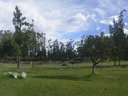 Vaste jardin site - RDP-House par Daniel Moreno Flores pichincha, Equateur