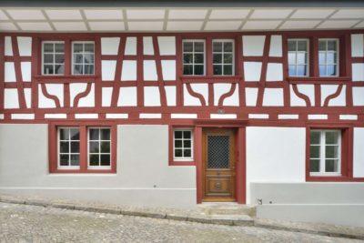 Façade entrée & ouvertures vitrées - House-Lendenmann par L3P Architekten - Regensberg, Suisse