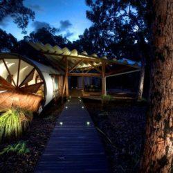 Site parsemé d'arbres & passrelle accès entrée - Drew-House par Anthill Constructions - Queensland, Australie