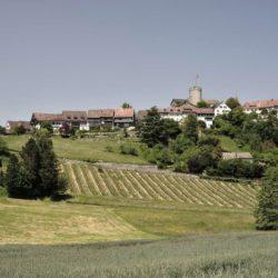 Vue panoramique site canton - House-Lendenmann par L3P Architekten - Regensberg, Suisse